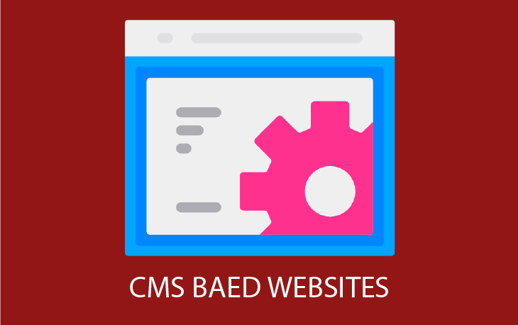 cms based website - CMS Based website 730x458 - CMS Based Website